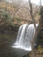 stream, waterfall, woodland, water, rapid, river, body of water, watercourse, state park,