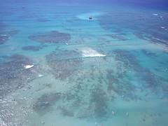 sea, shoal,