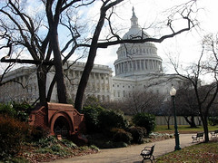 The Capitol (pingnews)