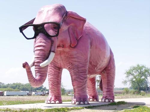 GiantPinkElephant