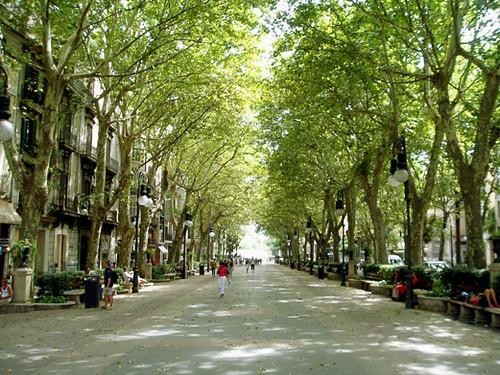 Шоппинг Пальма де Майорка