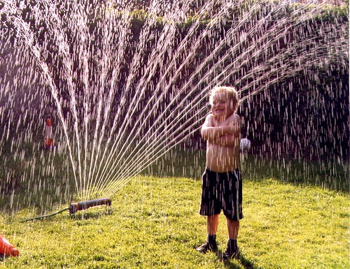 When fun is as simple as a lawn sprinkler