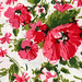 vintage fabric: floral