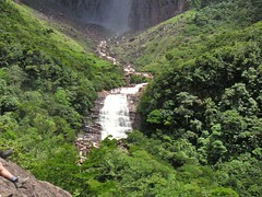 waterfall, rainforest, valley, hill station, ravine, jungle,