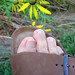 My foot on 31 July 2005 by Unhindered by Talent