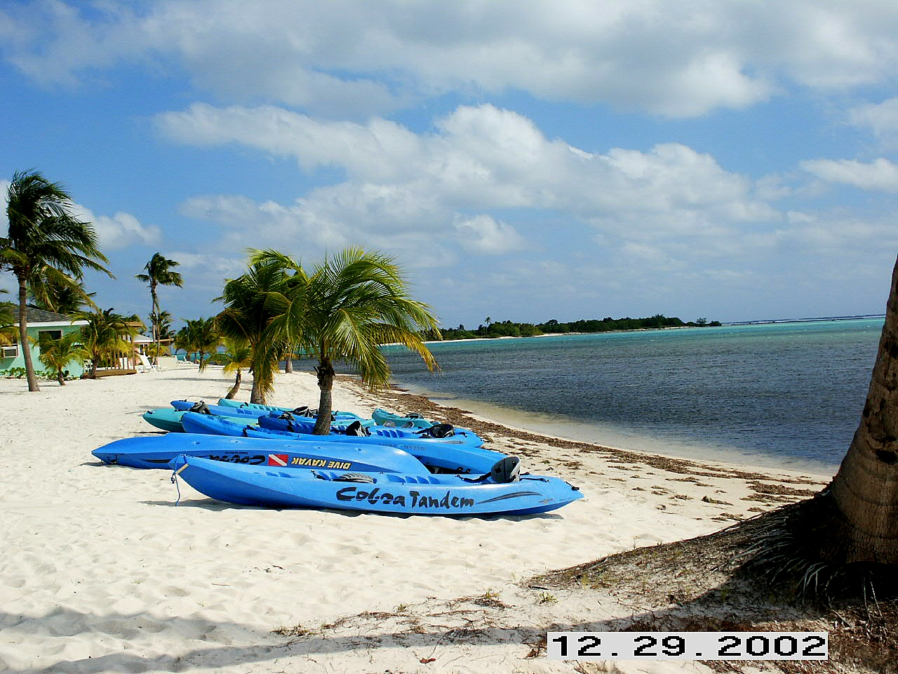 Little Cayman (13)