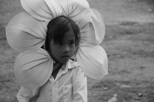 FLOWER GIRL DRESS WITH PETALS : DRESS WITH PETALS ...
