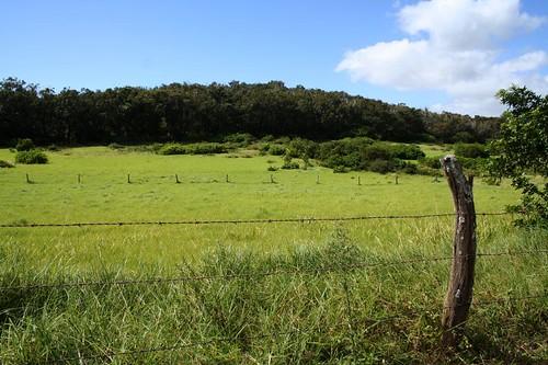 hawaii molokai kualapuu