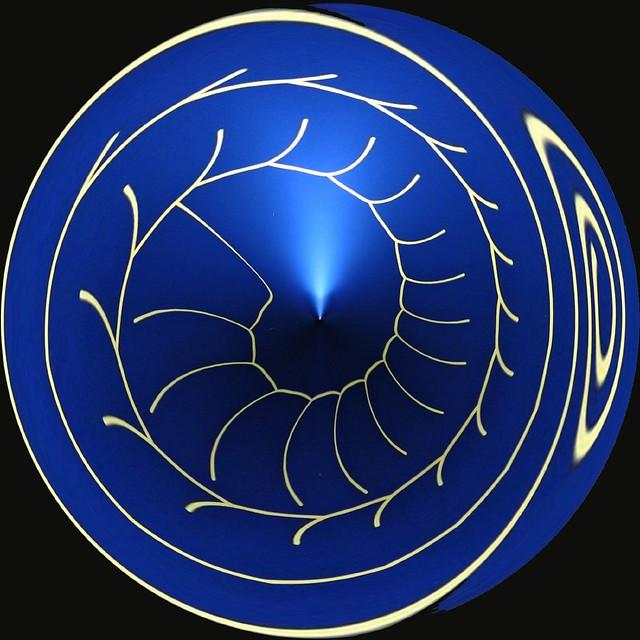 SpiralAmazingCircle