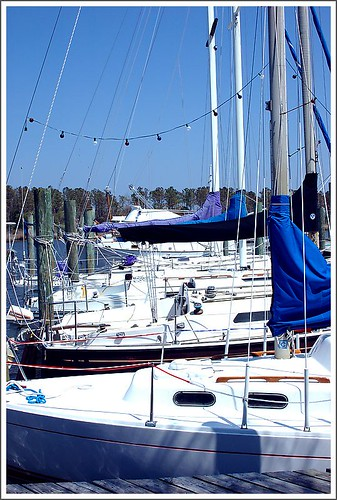 Sailboats, Manteo Harbor