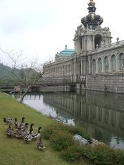 再現ツヴィンガー宮殿と鴨