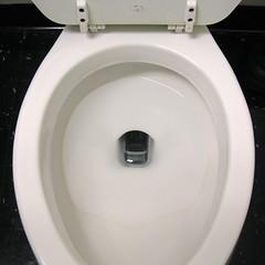 wheel(0.0), urinal(0.0), circle(0.0), sink(0.0), toilet(1.0), plumbing fixture(1.0), toilet seat(1.0), bidet(1.0),