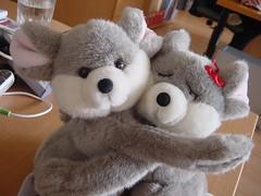 textile(0.0), footwear(0.0), marsupial(0.0), koala(0.0), teddy bear(1.0), fur(1.0), plush(1.0), stuffed toy(1.0), toy(1.0),