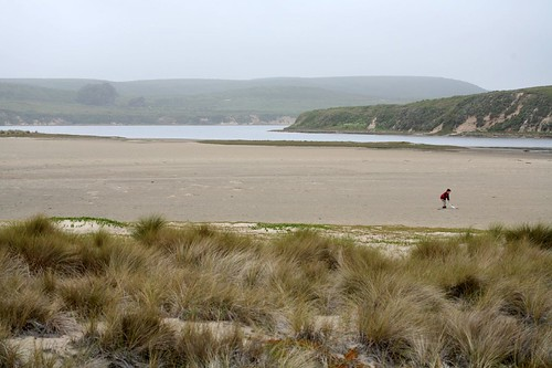 limantour, estero, estuary, point reyes, beach IMG_0405