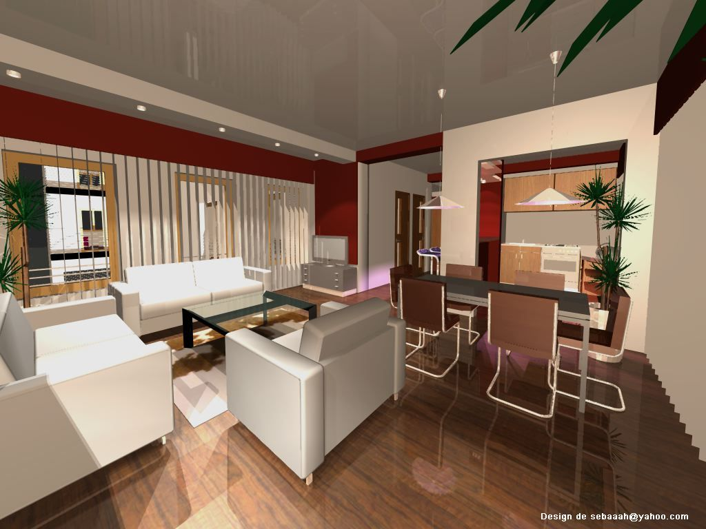 Amenajari interioare decoratiuni interioare design for Design interior case