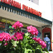 California Pharmacy geraniums and mailman