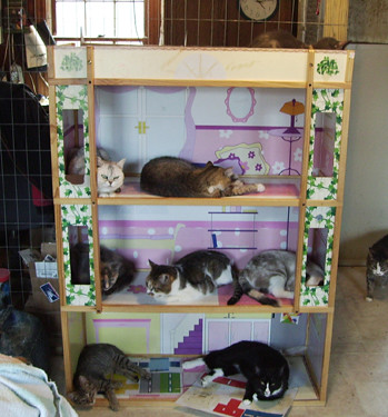 Cat Tree #2 -- three level living shared by seven cats