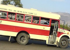 commercial vehicle(0.0), fire department(0.0), tour bus service(0.0), fire apparatus(0.0), emergency service(0.0), vehicle(1.0), transport(1.0), mode of transport(1.0), public transport(1.0), minibus(1.0), school bus(1.0), land vehicle(1.0), bus(1.0),