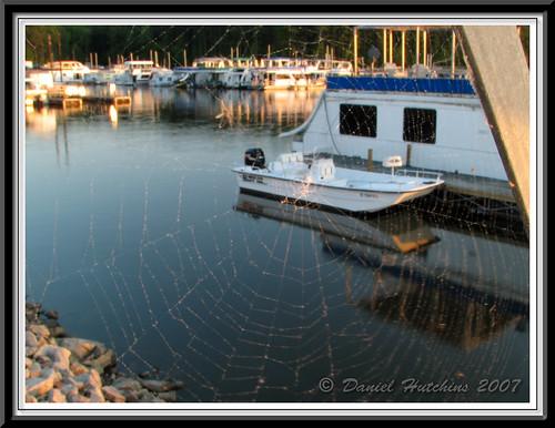 light sunset lake color detail water colors closeup boats outdoors nc spiderweb may northcarolina lakejordan