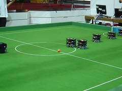 sport venue, grass, sports, artificial turf, games, football,