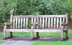 bench, furniture,