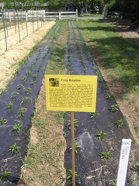 Soil born farm crop rotation sign reads crop rotation for Soil born farms