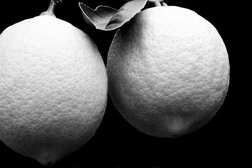 Lemons in Black & White by Len McAlpine