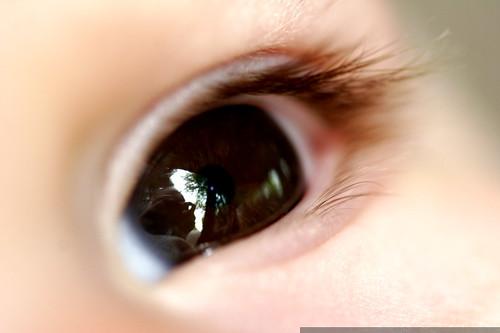 self portrait in sequoia's baby eye    MG 5469