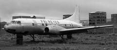 military aircraft(0.0), propeller driven aircraft(0.0), boeing c-97 stratofreighter(0.0), douglas dc-4(0.0), douglas c-54 skymaster(0.0), douglas dc-3(0.0), air force(0.0), airline(1.0), aviation(1.0), narrow-body aircraft(1.0), airliner(1.0), airplane(1.0), vehicle(1.0), convair c-131 samaritan(1.0), aircraft engine(1.0),