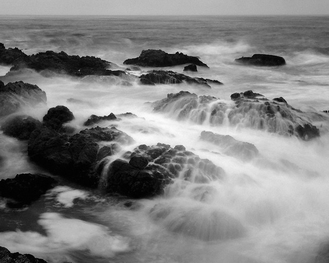 ocean dreams - b&w