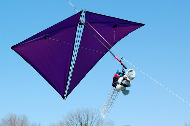 Parachuting Bear