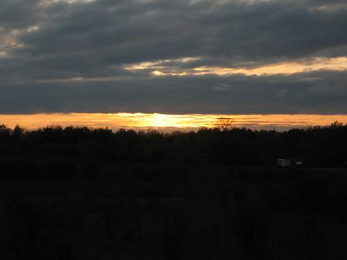 trees sunset sky silhouette dusk silhouettes
