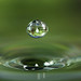 Water drop by Tanya Puntti (SLR Photography Guide)