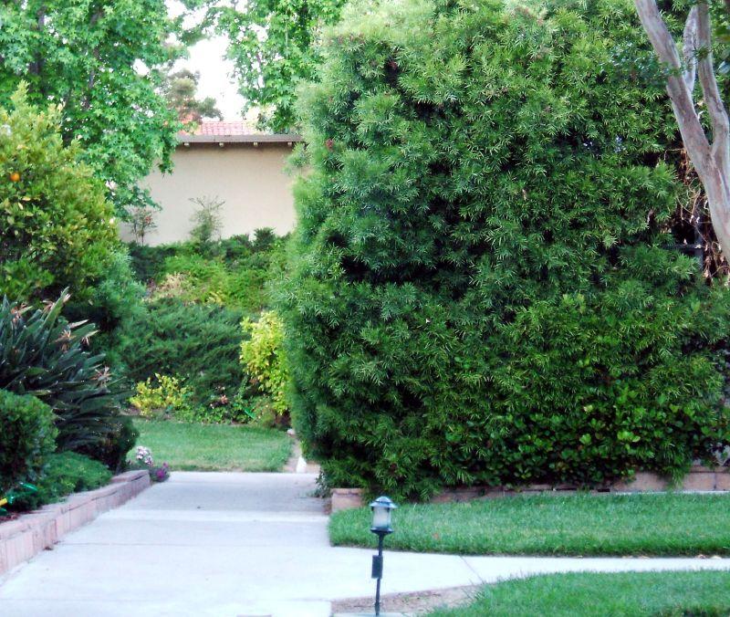 Nextdoor Is the Next Big Social Network for Neighbors