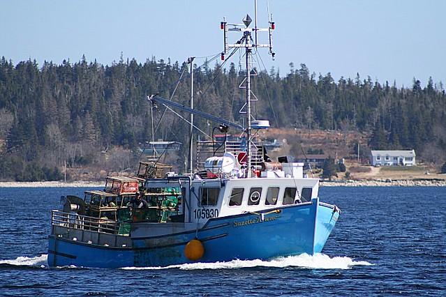 Lobster fishing flickr photo sharing for Nova scotia fishing