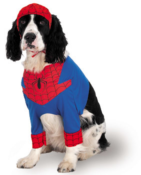 spiderdog | by Lyons, Tigers, and Bears...Oh My!
