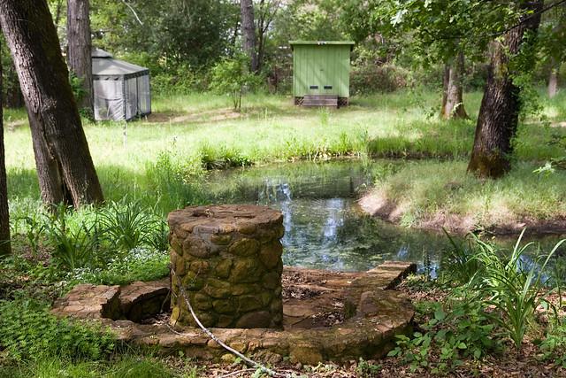 Bed And Breakfast Calistoga Backyard Garden Oasis | Flickr - Photo Sharing!