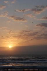 Atlantic Ocean - Daytona Beach, FL