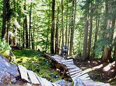 Byron Bay Farmstay Mountain Bike Park
