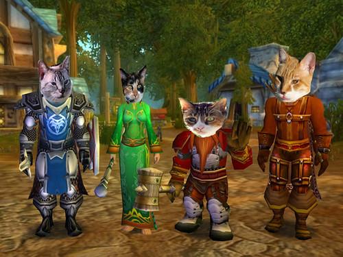 CatWorld of Warcraft