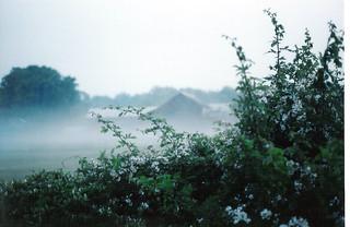 """Mist"""