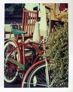 bike polaroid