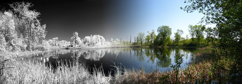 toronto ontario canada ir infrared sping humberriver humbervalley barefoothiking