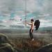 "[ 229/365 ] ""The Return Of The Hummingbird"" by Daniel Serva"