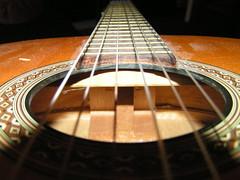 banjo uke(0.0), cuatro(1.0), string instrument(1.0), ukulele(1.0), acoustic guitar(1.0), guitar(1.0), vihuela(1.0), bass guitar(1.0), string instrument(1.0),
