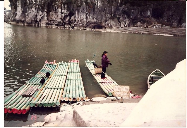 Using birds to catch fish Lijiang style