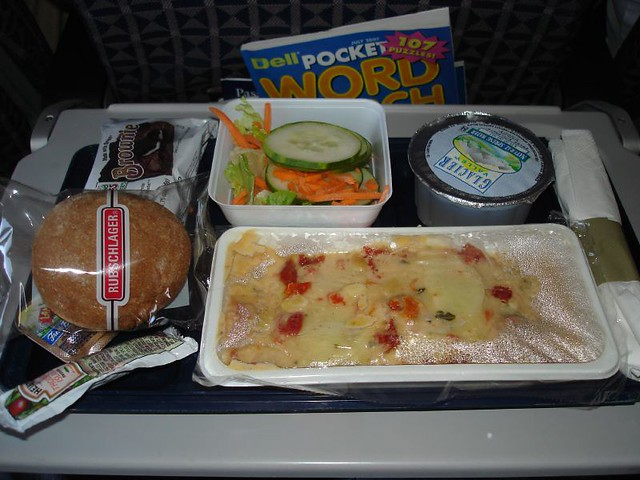 Delta Airlines Food Review