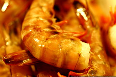 ginormous prawns for dinner    MG 5327