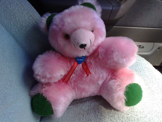 08/06/2007 the pink teddy