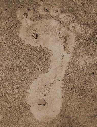 Footprint(S)